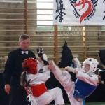 Dragon Fights Kyokushin Cup – Radom 2017 (5)