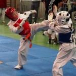 Dragon Fights Kyokushin Cup – Radom 2017 (8)
