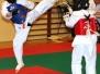 Ferie z Karate 2017 - Podsumowanie