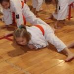 Karatecy ARS Klub Kyokushinkai potwierdzili swoje umiejętności (15)