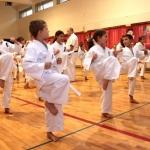 Karatecy ARS Klub Kyokushinkai potwierdzili swoje umiejętności (22)