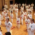 Karatecy ARS Klub Kyokushinkai potwierdzili swoje umiejętności (23)