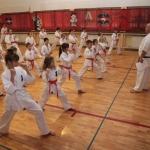 Karatecy ARS Klub Kyokushinkai potwierdzili swoje umiejętności (32)