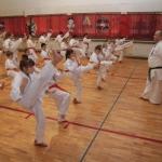 Karatecy ARS Klub Kyokushinkai potwierdzili swoje umiejętności (33)