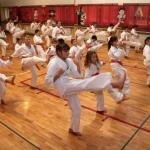 Karatecy ARS Klub Kyokushinkai potwierdzili swoje umiejętności (34)
