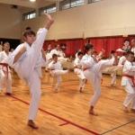 Karatecy ARS Klub Kyokushinkai potwierdzili swoje umiejętności (36)