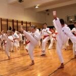 Karatecy ARS Klub Kyokushinkai potwierdzili swoje umiejętności (37)