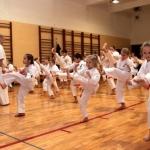 Karatecy ARS Klub Kyokushinkai potwierdzili swoje umiejętności (39)
