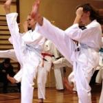 Karatecy ARS Klub Kyokushinkai potwierdzili swoje umiejętności (40)
