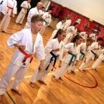 Karatecy ARS Klub Kyokushinkai potwierdzili swoje umiejętności (43)