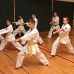Karatecy ARS Klub Kyokushinkai potwierdzili swoje umiejętności (45)