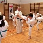 Karatecy ARS Klub Kyokushinkai potwierdzili swoje umiejętności (47)