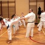 Karatecy ARS Klub Kyokushinkai potwierdzili swoje umiejętności (58)