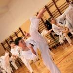 Karatecy ARS Klub Kyokushinkai potwierdzili swoje umiejętności (60)