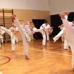 Karatecy ARS Klub Kyokushinkai potwierdzili swoje umiejętności (61)