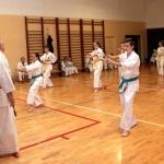 Karatecy ARS Klub Kyokushinkai potwierdzili swoje umiejętności (64)