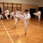 Karatecy ARS Klub Kyokushinkai potwierdzili swoje umiejętności (66)