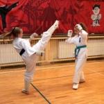 Karatecy ARS Klub Kyokushinkai potwierdzili swoje umiejętności (70)