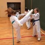 Karatecy ARS Klub Kyokushinkai potwierdzili swoje umiejętności (71)