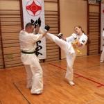 Karatecy ARS Klub Kyokushinkai potwierdzili swoje umiejętności (72)
