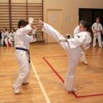 Karatecy ARS Klub Kyokushinkai potwierdzili swoje umiejętności (73)