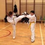 Karatecy ARS Klub Kyokushinkai potwierdzili swoje umiejętności (75)
