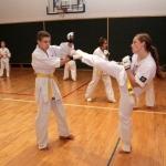 Karatecy ARS Klub Kyokushinkai potwierdzili swoje umiejętności (78)