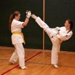 Karatecy ARS Klub Kyokushinkai potwierdzili swoje umiejętności (79)