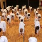 Karatecy ARS Klub Kyokushinkai potwierdzili swoje umiejętności (8)