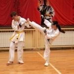 Karatecy ARS Klub Kyokushinkai potwierdzili swoje umiejętności (81)