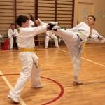 Karatecy ARS Klub Kyokushinkai potwierdzili swoje umiejętności (83)