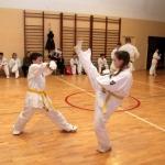 Karatecy ARS Klub Kyokushinkai potwierdzili swoje umiejętności (86)