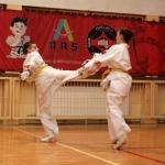 Karatecy ARS Klub Kyokushinkai potwierdzili swoje umiejętności (87)