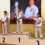 VII Otwarty Turniej Karate Kyokushin w Łukowicy (8)