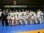 Mistrzostwa Świata Karate Kyokushin – Tokio 2014