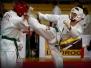 One World One Kyokushin