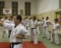 podsumowanie-seminarium-shihan-kenji-yamaki-181