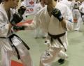 podsumowanie-seminarium-shihan-kenji-yamaki-263