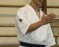 podsumowanie-seminarium-shihan-kenji-yamaki-4