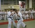 podsumowanie-seminarium-shihan-kenji-yamaki-87