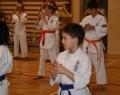 karate-kyokushin-sw-2013-44