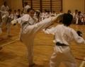 karate-kyokushin-sw-2013-49