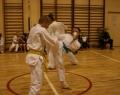 karate-kyokushin-sw-2013-50