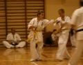 karate-kyokushin-sw-2013-53