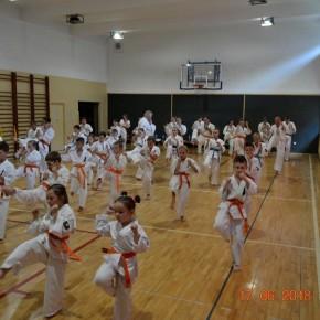 Egzamin na stopnie szkoleniowe w Karate Kyokushin już za nami