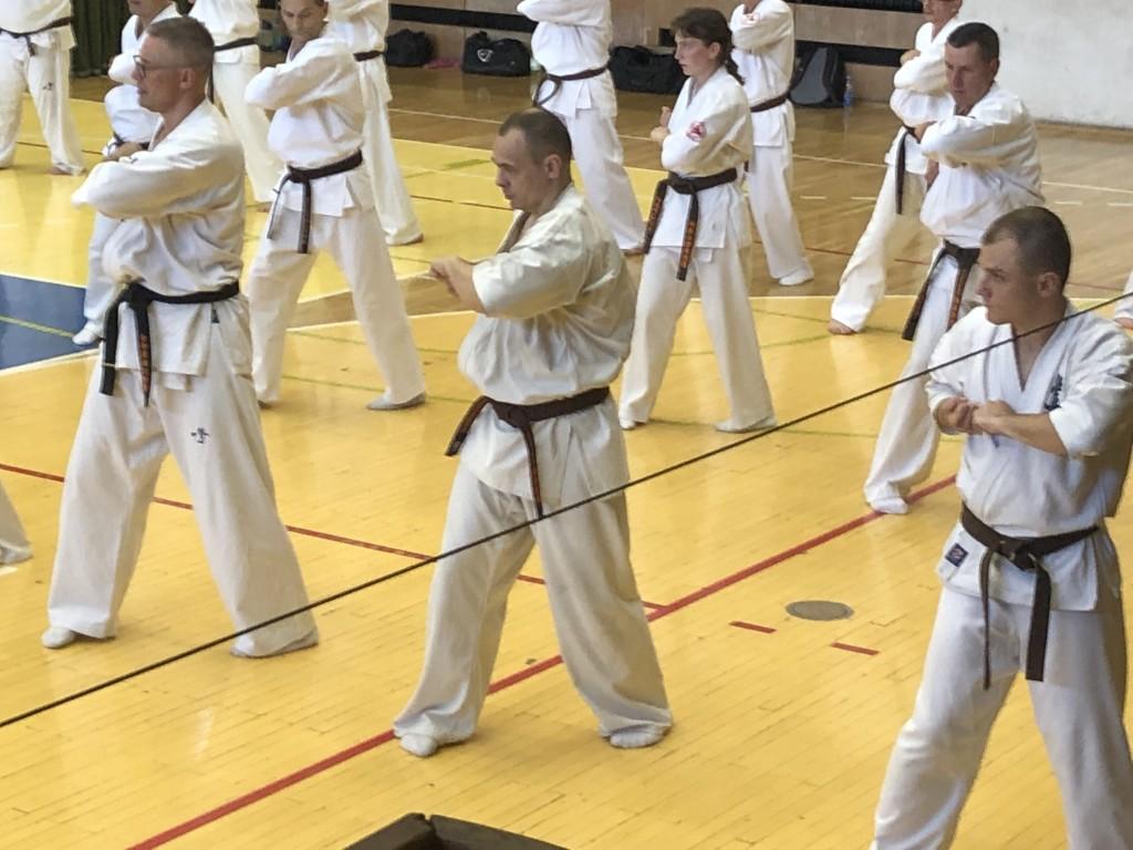 46 Wschodnioeuropejski Obóz Karate Kyokushin