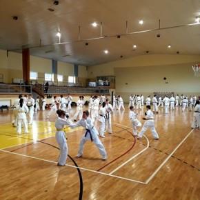 I Otwarte zgrupowanie Kumite Małopolskiego Okręgu Związku Karate