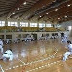 Zgrupowaniu kumite (4)
