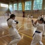 Zgrupowaniu kumite (8)